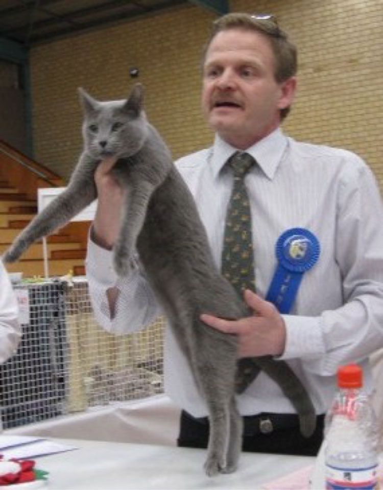 Saph GC Kimara Silva Leerah, the personification of the Australian-style Russian blue, pictured here with a delighted judge, Fabrice Calmes (FIFe).